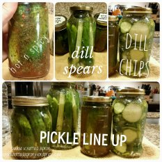 Homemade Pickles - Double Knotted Apron
